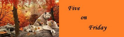 Five on Friday - Autumn edition