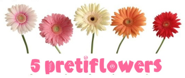 5flowers2